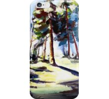 Sunset in the forest iPhone Case/Skin