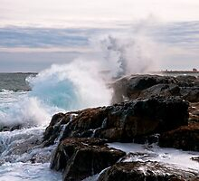Nor' Easter on Ocean Point, Maine by MarkEmmerson