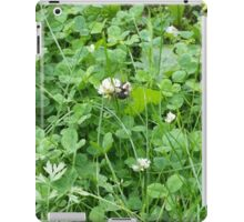 Bumble bee on a blossom iPad Case/Skin