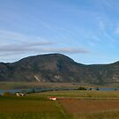 Spring in Osoyoos by Tiffany Vest
