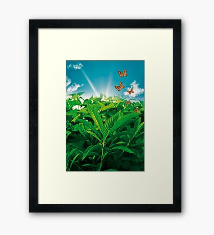 Nature Day Framed Print