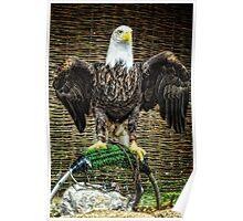 Bold Eagle Poster