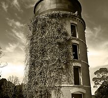 Water Tower  by Judith Cahill