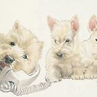 Scottish Terrier Puppies by BarbBarcikKeith