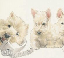 Scottish Terrier Puppies Sticker