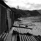 Boat Sheds - Bulli, Australia by TMphotography