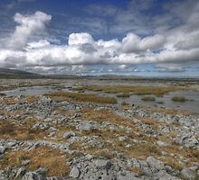 Burren Turlough by John Quinn