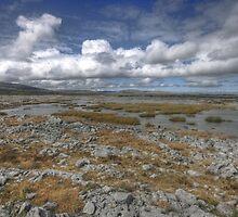 Burren Turlough by John Quinn