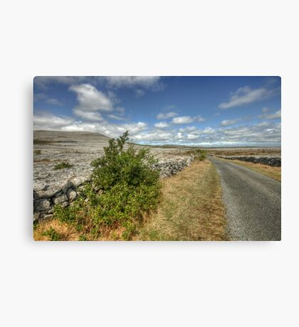 Rural Clare road Canvas Print
