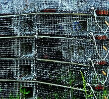 Lobster Traps by ctheworld