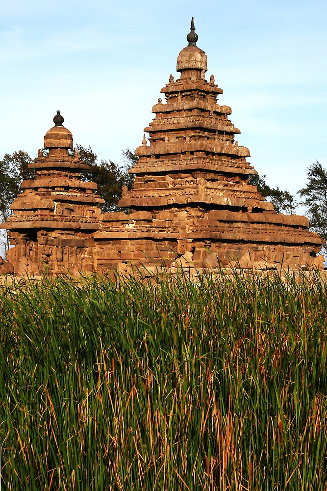 Shore Temple by Jane McDougall