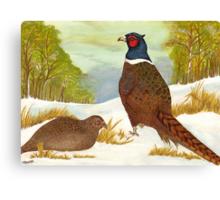 Brace of Pheasants Canvas Print