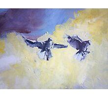 Sky Birds Photographic Print