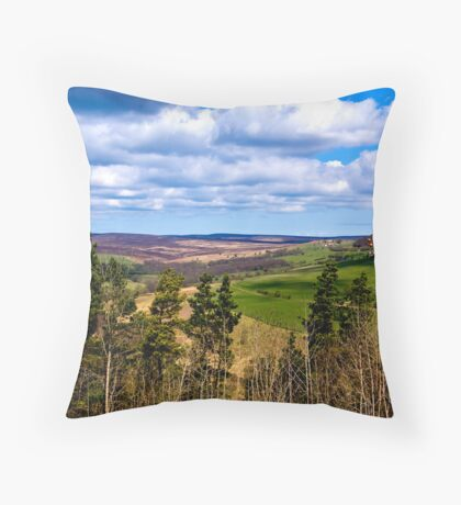 View of Pockley Moor. Throw Pillow