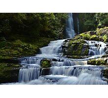 Jungle paradise Photographic Print