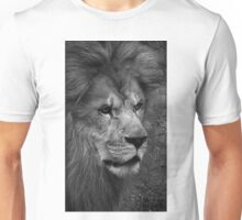 Now a new look in my eyes my spirit rise..Forget the past..Present tense works and lasts..New life in place of old life..Unscarred by trials..Demanding plea for unity between us all Unisex T-Shirt