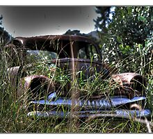 Beauty of yesteryear discarded by PhotoButterfly