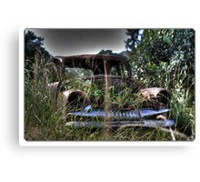 Beauty of yesteryear discarded Canvas Print