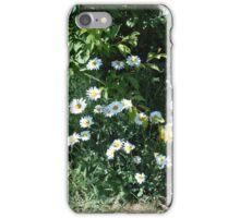 Backyard Daisies iPhone Case/Skin