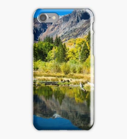 Beaver Pond iPhone Case/Skin
