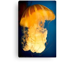 The Big Yellow Jelly Canvas Print