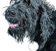 Smiling Labradoodle by Yvonne Carter