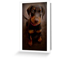 There are treats! I know there are treats! Greeting Card