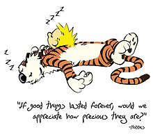 Calvin And Hobbes Quote Best moment by EsttelArt