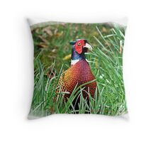 """ Male Pheasant"" Throw Pillow"