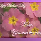 You're the best - mothers day card  by steppeland