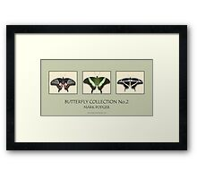 Butterfly Horizontal Collection 2 - Print Framed Print