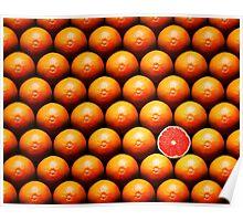 Grapefruit slice between group Poster