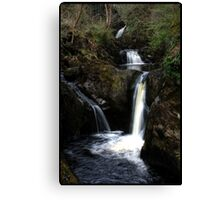 HDR waterfall Canvas Print