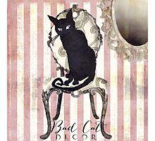 Bad Cat I Photographic Print