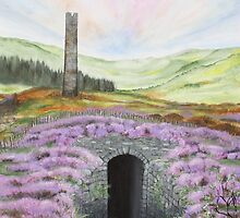 Cwmsymlog Lead Mine - Nature Healing the Land by Annie Lovelass