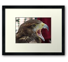 Buzzard Call Framed Print
