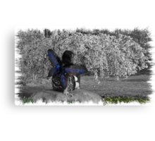 Fairy Wishes Canvas Print