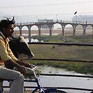 Morning In Udaipur, Rajasthan, India by RIYAZ POCKETWALA