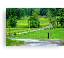 A little bit country.... Canvas Print