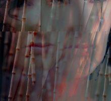 Emerging Freedom From Within © Vicki Ferrari Photography by Vicki Ferrari