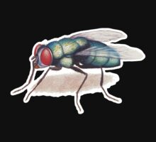 The Fly Kids Clothes