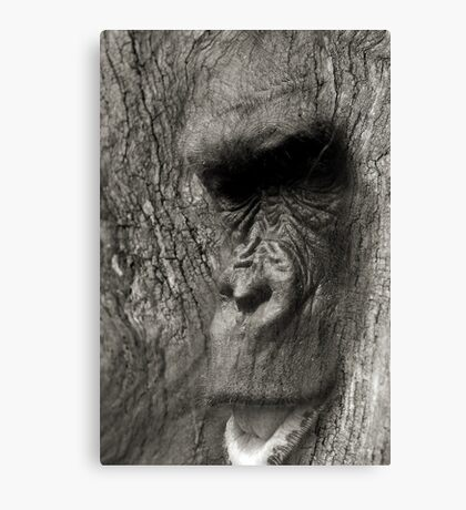 At One With Nature #1 Canvas Print
