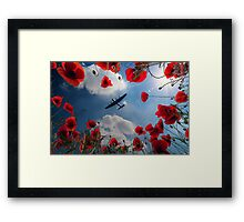 Looking Upon The Fallen Framed Print