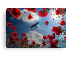 Looking Upon The Fallen Canvas Print