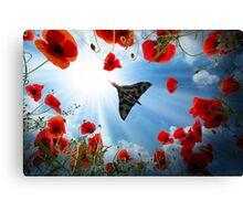 Vulcan Overhead Canvas Print