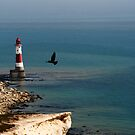 Beachy Head Lighthouse II by lallymac