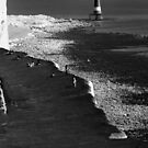Beachy Head Lighthouse III by lallymac