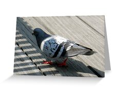 Rat with wings Greeting Card