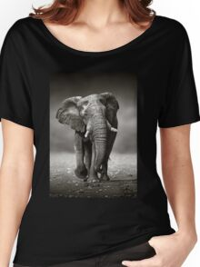 Elephant approach from front Women's Relaxed Fit T-Shirt