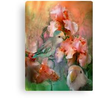 Love Among The Iris Canvas Print